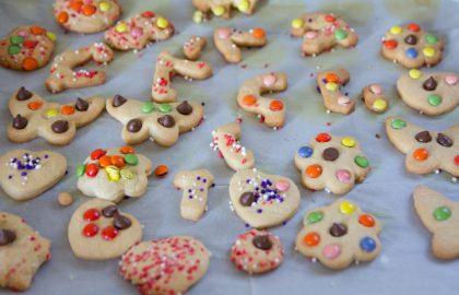 מסיבת עוגיות